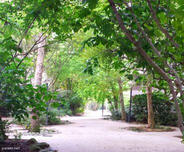 Promenade Saint Nicolas