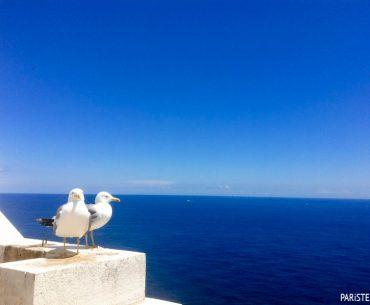 Tur Programı Önerileri VII - Côte d'Azur Rehberi Pariste.Net