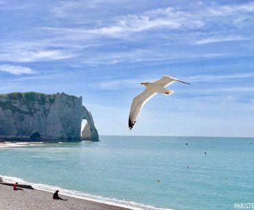 Tur Programı Önerileri VIII - Normandiya Rehberi Pariste.Net Etretat